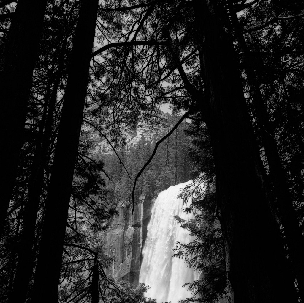 Vernal Falls Through the Trees